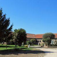 Casa rural con arboleda